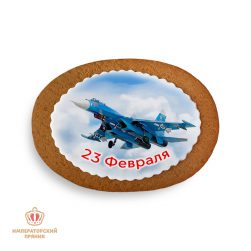 """Самолет """"23 февраля"""" №2 (40 гр.)"""