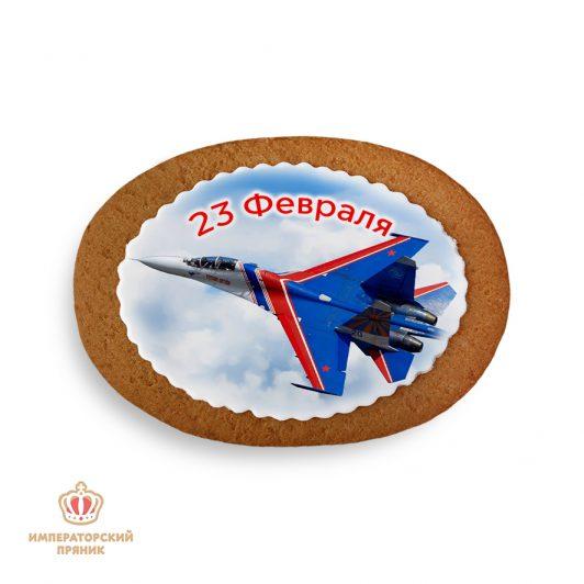 """Самолет """"23 февраля"""" (40 гр.)"""