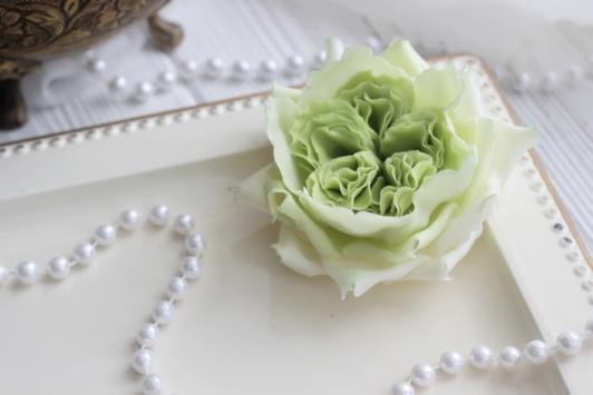 Роза Остина (зеленая)