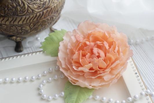 Пион (персиковый)
